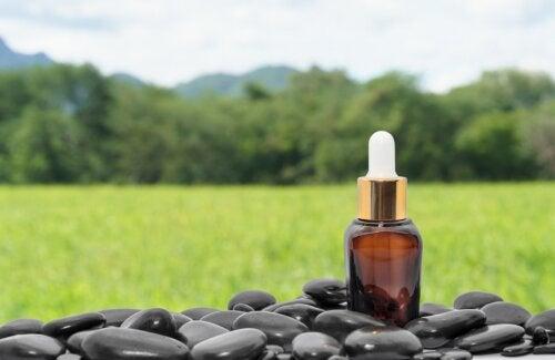 Aceite de ricino negro jamaicano: origen y propiedades