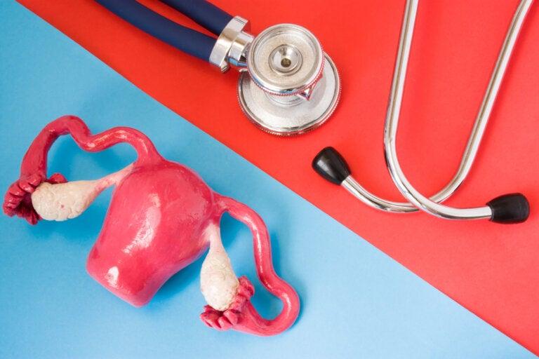 ¿Qué es la anovulación y por qué ocurre?
