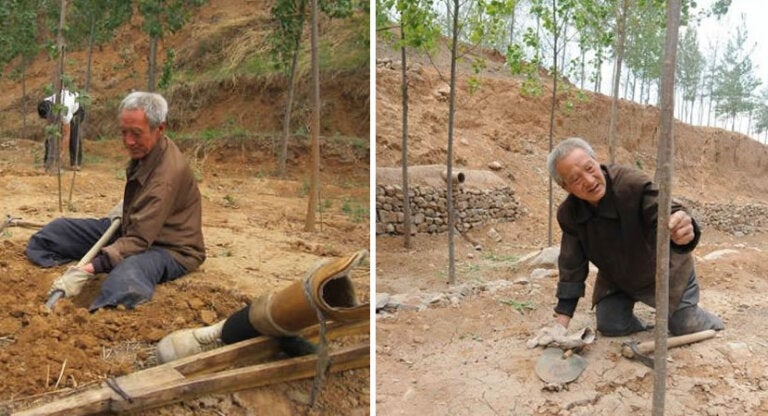 A sus 72 años y sin piernas ha plantado más de 17 000 árboles
