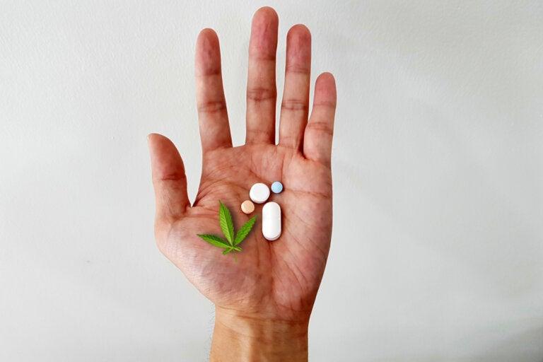 Uso de marihuana medicinal para el dolor crónico: ¿es seguro?