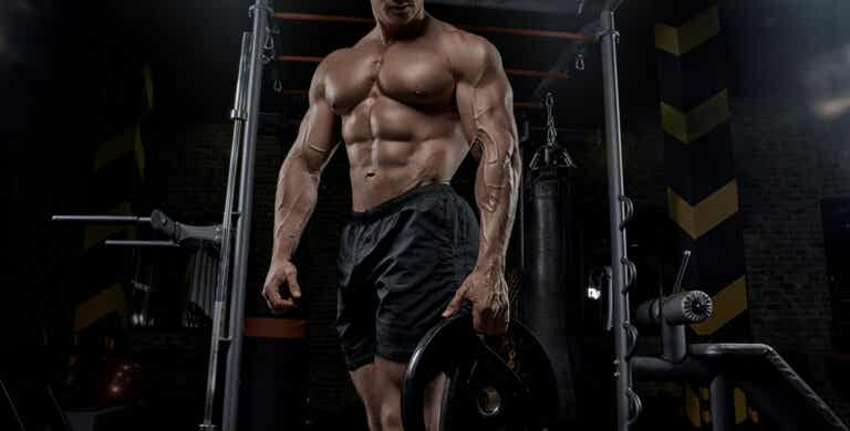 Dwayne Johnson's demanding diet, the Rock, to gain muscle