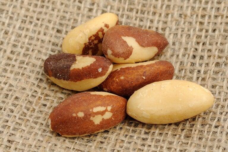 Nueces de Brasil: propiedades, nutrición y usos en la cocina