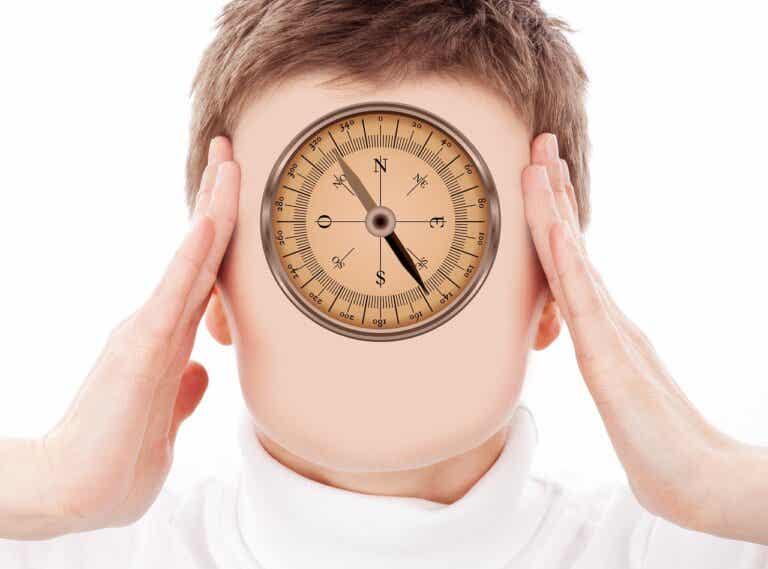 ¿Qué es la disfunción ejecutiva y cómo puede afectar?