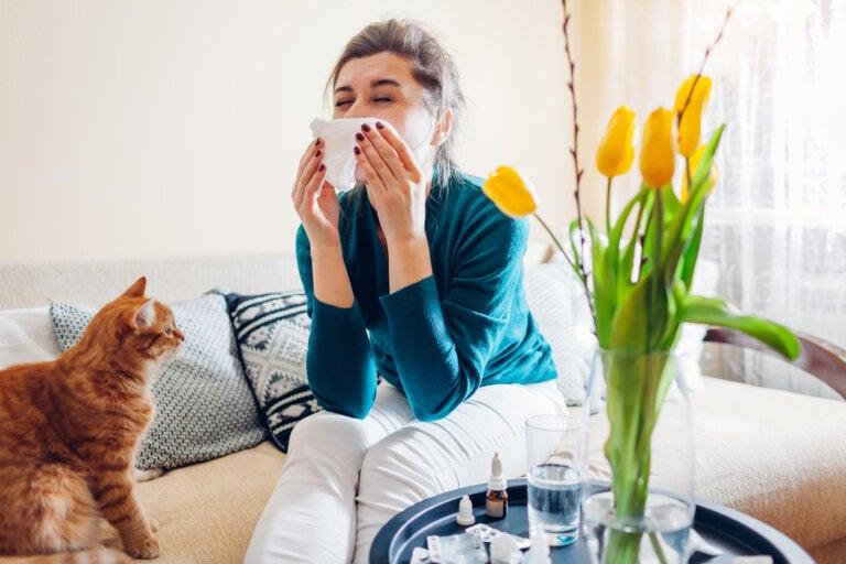 Tipos de medicamentos usados para tratar las alergias