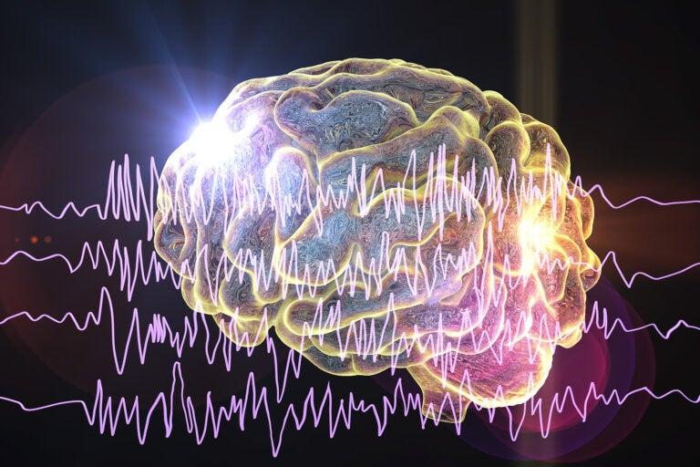Los 5 tipos de ondas cerebrales